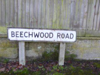 Beechwood Road   Clare Bull